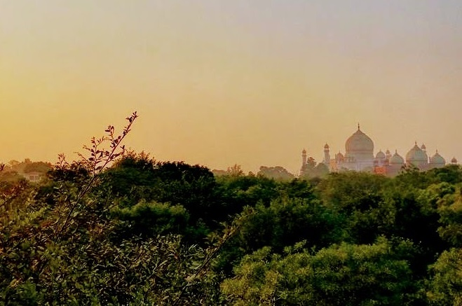 Taj Nature Walk - Agra