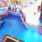 Grand Venice Mall - Greater Noida