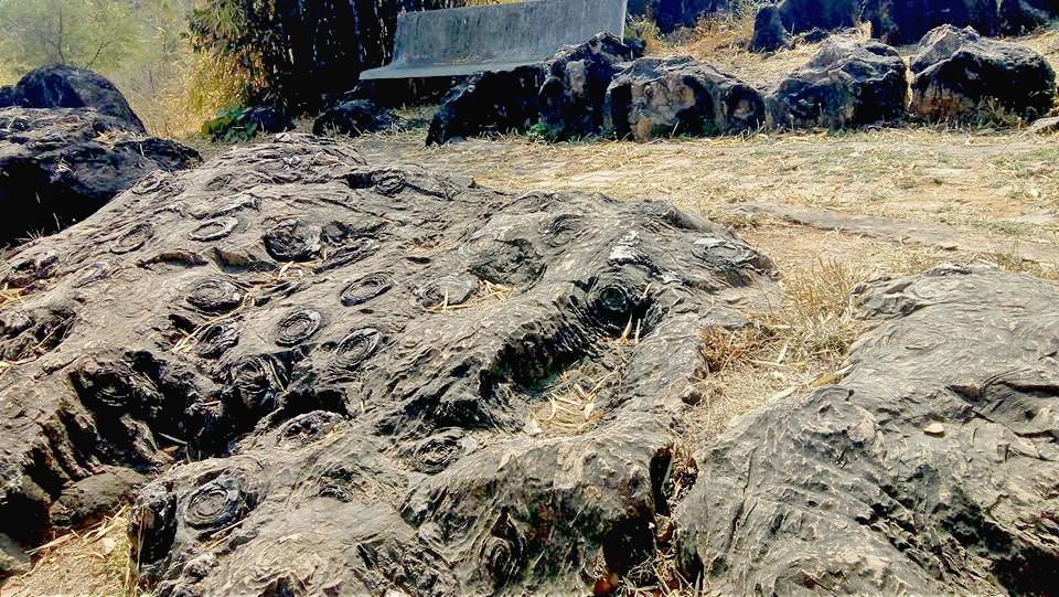 Salkhan Fossil Park - Mirzapur